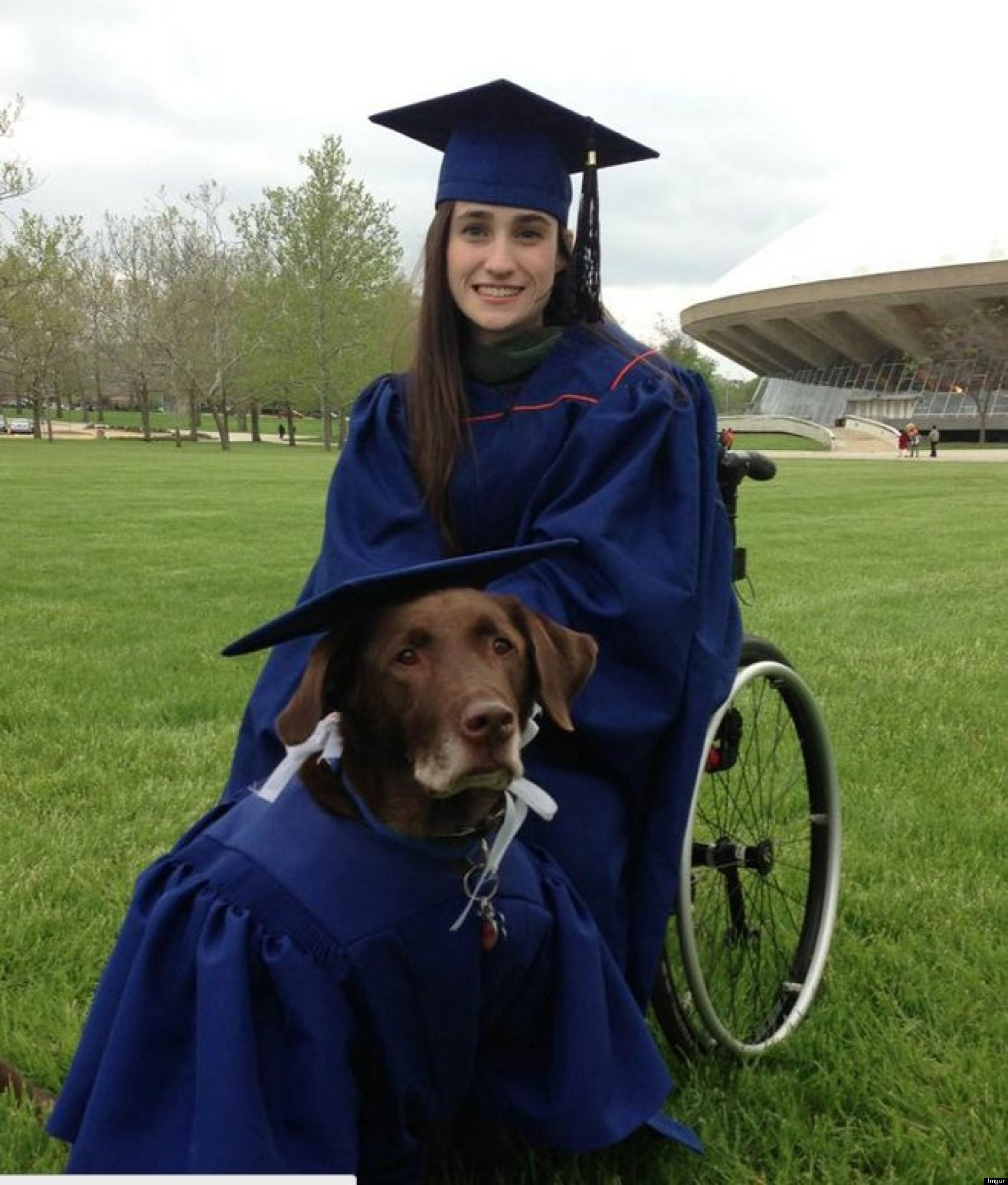 How Does an Individual With a Disability Get a Service Dog? • The ...