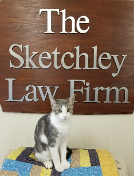 Stormy Sketchley, Head Purr-a-Legal